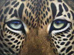 Dinkwe - Leopard Eyes by David Bucklow | Wildlife Art Artwork | Fine Art Portfolio