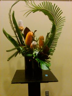 Banksia and palm