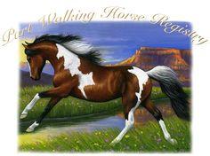 Part Walking Horse Registry