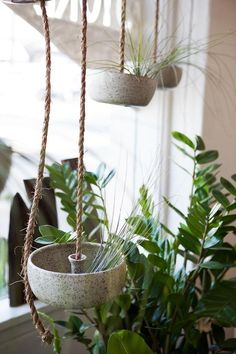 Hanging ceramic planters in the store window from K+R general store LA