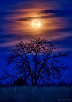 ~~Full Wolf Moon, Pueblo Colorado by Lars Leber~~