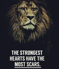 247 Motivational Inspirational Quotes can find Strong quotes and more on our Motivational Inspirational Quotes 34 Citation Lion, Strong Quotes, Positive Quotes, Strong Motivational Quotes, Wisdom Quotes, Me Quotes, Qoutes, Scar Quotes, Happy Quotes