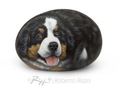 Sweet Bernese Mountain Dog Puppy Painted on A Sea Stone | Incredibly Detailed Rock Art by Roberto Rizzo | Hand Painted Pets Dog Fine Art