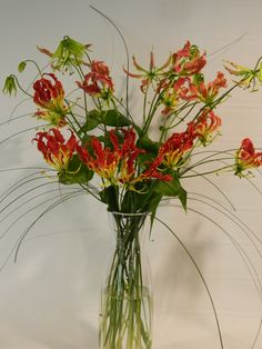Long elegant Gloriosa Lily Flowers and Bear Grass Gloriosa Lily, Fire Lily, Fire Flower, Lily Bouquet, Flowers Delivered, Types Of Flowers, Grasses, Floral Arrangements, Birth