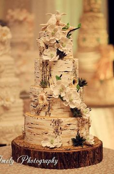 Lovely birch tree wedding cake; use this idea of a paperbark stump with Australian wild flowers, gumnuts and leaves instead of flowers. Maintain cream palette or go for pastels? Add Gumnut baby at top instead of birds.