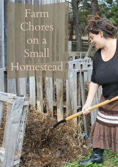 Farm Chores on a Small Homestead {LoveLiveGrow} #gardening #livestock #homesteading