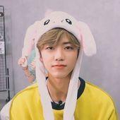 Nct dream Jaemin (the cutest bean) Nct 127, K Pop, Winwin, Yang Yang, Taeyong, Meme Photo, Rapper, Nct Dream Jaemin, Johnny Seo