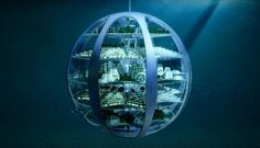 The SmartThings Future Living Report predicts how homes will look in 100 years. Perhaps most striking is where they& be: underwater and underground. Underwater Bubbles, Underwater City, Underwater Homes, Underwater Hair, Underwater Tattoo, Underwater Drawing, Titanic Underwater, Architecture Design, Amazing Architecture