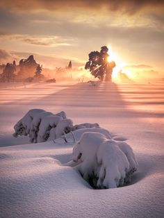 Winter Wonderland Sunset ... after the storm   by Andreas Wonisch on Flickr / Getty Images
