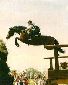 Horses don't need wings to fly!