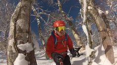 Skiing powder on a bluebird day in Nozawa Onsen, Japan.