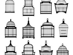 The Cage We Make by Jayne