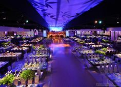Emmy's Governors Ball