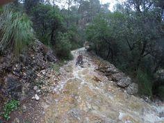Canyoning in den Schluchten von Coanegra Country Roads, Majorca, Travel