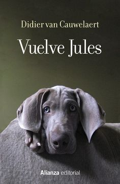 Buy Vuelve Jules by Alicia Martorell Linares, Didier van Cauwelaert and Read this Book on Kobo's Free Apps. Discover Kobo's Vast Collection of Ebooks and Audiobooks Today - Over 4 Million Titles! Anaya, Editorial, Free Apps, Audiobooks, Ebooks, Reading, Macarons, Alice, Libros