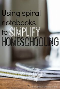 Use a 10cent spiral notebook to write down daily lessons for your homeschooling kids.  Very easy approach.