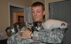Aww. Cute kittens with a soldier.