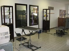 Gallery For > Dog Grooming Salon