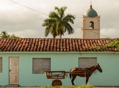 Horse cart in Vinales by Martin Arnold on 500px