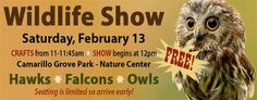 Wildlife Show at Camarillo Grove Park on Saturday, February 13th — Conejo Valley Guide