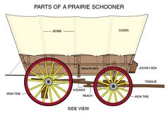 conestoga wagon plans | Labeled diagram great for notebook page. Also see back view .