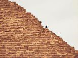 Kingvitaly jailed in Egypt after climbing a pyramid asking for donations for Australias bushfires