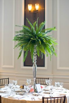 Fern wedding centerpieces are cool and woodsy. (Board author note: I might add a few sprays of baby's breath to give it some additional texture and romance. Fern Centerpiece, Green Centerpieces, Wedding Table Centerpieces, Wedding Decorations, Centerpiece Ideas, Wedding Ideas, Wedding Banners, Centrepieces, Wedding Invitations