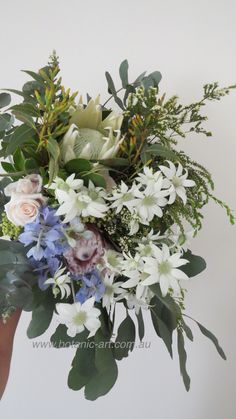 Beautiful #australian natives such as #flannel flowers mixed with roses and #proteas create a true #country style #bouquet. #rustic #natives #hand tied #mixed greenery
