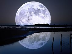 Full Moon Art: Moon rise over the water. Moon Moon, Moon Gif, Blue Moon, Moon River, Orange Moon, Dark Moon, Timeline Cover, Ciel Nocturne, Shoot The Moon