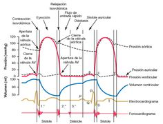Guyton's heart physiology graph