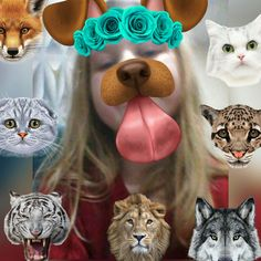 #sweet #animals #snapchat  #photoeditor