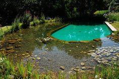 Eu adoro piscina - I adore swimming pool Swimming Pool Pond, Natural Swimming Ponds, Natural Pond, Pool Fun, Pool Garden, Water Garden, Water Plants, Swimming Pool Cleaners, Pool Chlorine