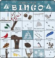 Play Nature Bingo at a Mass Audubon Wildlife Sanctuary near you! We have Bingo cards with year-round and seasonal nature themes. Winter Camping, Winter Fun, Winter Theme, Winter Walk, Winter Outdoor Activities, Camping Activities, Activities For Kids, Nature Scavenger Hunts, Scavenger Hunt For Kids