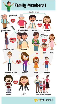 Members of the Family Vocabulary | Family Members Tree - 7 E S L