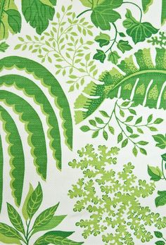 Rainforest Fabric Large weave white cotton fabric with jungle leaf design in rich green. Suitable for Curtains and General Domestic Upholste...