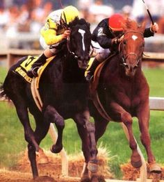 Sunday Silence and Easy Goer