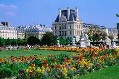 Louvre, Paris  The flowers in the garden outside the Louvre - Paris, Ile-de-France