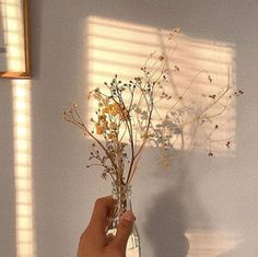 Image discovered by Find images and videos about cute, flowers and sun on We Heart It - the app to get lost in what you love. Cream Aesthetic, Brown Aesthetic, Flower Aesthetic, Aesthetic Vintage, Aesthetic Photo, Aesthetic Pictures, Photo Wall Collage, Picture Wall, Aesthetic Backgrounds