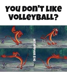 humor volleyball