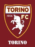 Torino: la mediana soffre