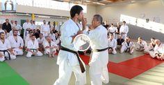 Sensei Zenei OSHIRO lors du Imagin' Arts Masterclass 2016. Travail sur la décontraction, capturer et dévier l'attaque mais aussi une question de «tempo » pour procéder à la contre-attaque. #karate #gojuryu #karatedo