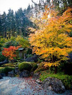 Zen-Garden | da Tobias Leeger