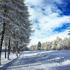 Finalmente ha nevicato! Anche se in tanti non amano la neve, io invece amo quella sensazione di pace che ti da un paesaggio completamente innevato. Buona Befana a tutte le fanciulle che leggono e che sia un anno meraviglioso per tutti voi. Francesco  Foto scatatta con #StonexOne! #byStonexOne