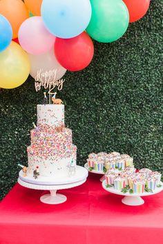 Zoo Birthday Cake, Toddler Birthday Themes, Shared Birthday Parties, Animal Birthday Cakes, Rainbow First Birthday, 2nd Birthday Party Themes, Party Themes For Girls, Birthday Ideas, Birthday Party Design