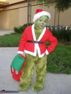 christmas, children costumes, grinch costum, homemade costumes, stole christma, costume halloween, homemad costum, kid, homemade halloween costumes