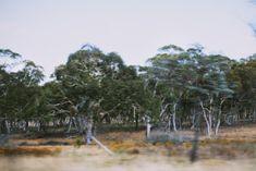ticket - near the VIC/NSW border, Australia, 2012 - Jessica Tremp