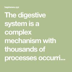 The digestive system is a complex mechanism with thousands of processes occurring at the same time. The process of digestion is very complicated, which is why we must ensure it runs as smoothly as …