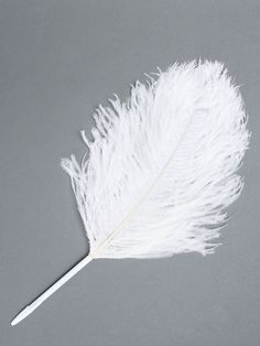 MAISON MARTIN MARGIELA LINE 13 COLLECTION OF FURNITURE AND WHITE OBJECTS FOR THE HOME. FEATHER PEN 47CM LONG