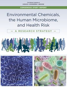 Environmental Chemicals, the Human Microbiome, and Health Risk: A Research Strategy Environmental Studies, National Academy, Academy Of Sciences, Research, Catalog, Medicine, Pdf, Study, Health