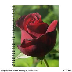 Elegant Red Velvet Rose Spiral Notebook - $15.95 - Elegant Red Velvet Rose Spiral Notebook - by #RGebbiePhoto @ #zazzle - #Rose #Flowers #Red - A beautiful rosebud, deep velvet red in color, in a spring garden. Strong red and green theme, this elegant rose adds a touch of class to any occasion. Elegance and Romance, a lover's flower. A definite must for red rose lovers!